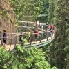 Capilano Suspension Bridge & Cliff walk, Canada