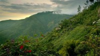 May Day Mountains, Jamaica